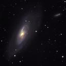 M106 & NGC 4217,                                Sergei Sankov