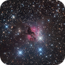 The Very Rare Nebula LBN 1022,                                Russ Carpenter
