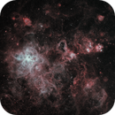 Nest of Spiders (NGC 2070 and Co),                                jlangston_astro
