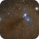 Dust in Corona Australis,                                Daniele Gasparri