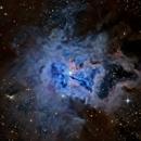 Iris Nebula (Reprocessed),                                KuriousGeorge