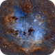 Tadpole Nebula IC410,                                Maple Gao
