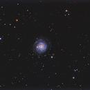 NGC 3344 Face On Spiral Galaxy,                                Ken Sharp