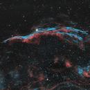 Veil Nebula NGC 6960,                                NelsonAstrofoto