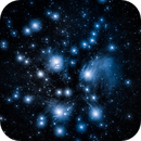 Pleiades M45,                                Travin