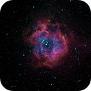 NGC 2239,                                Cezary Morga