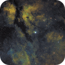 IC1318,                                Alexander Sielski