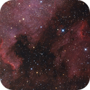 North America and Pelican nebulae,                                Phil Hosey