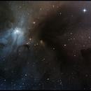 A Peak Into The Rho Ophiuchi Complex,                                Dan Watt