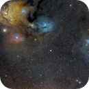 Rho Ophiuchi and blue horsehead,                                casamoci