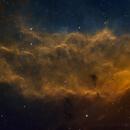NGC1499 California Nebula,                                Peter Jenkins