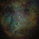 Elephant trunk IC1396,                                Sharky