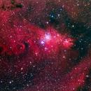 NGC2264,                                Yabu Gaillé