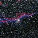 NGC 6960 - The Veil Nebula,                                AstroAdventures