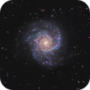 The Phantom Galaxy M74 2 scope composite.,                                Olly Penrice