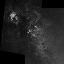 Central Cygnus Mosaic in Hydrogen alpha,                                Neil Winston