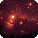 Horsehead Nebula from DSW Greyscale data download,                                Garry O'Brien