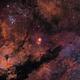 Sh2-108 (Gamma Cygni) - SHO,                                Joel Shepherd