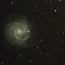 NGC 3184,                                Robin Clark - EAA imager