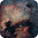 North America Nebula - second try,                                Mark Lambertz