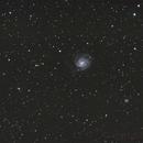 M101 widefield,                                Runo