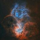 Sh2-132 • The Lion Nebula in HOO,                                Douglas J Struble