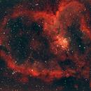 HEART,                                Brian Meyerberg