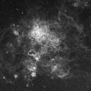 Yet another first light - Tarantula Nebula test of FSQ-85ED,                                Rick Stevenson