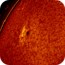 2016.03.26 Sun AR2526 H-Alpha,                                Vladimir