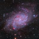 M33 - Triangulum galaxy,                                Ricardo Tortosa