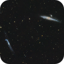 Who comes up with these names? The whale and crowbar galaxy,                                TobsHD