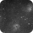 Flaming Star Nebula - QHY600 First Light,                                AllAboutRefractors