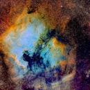 The Pelican and North America Nebula,                                Fred Bagni