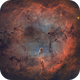 IC 1396 | The Elephant Trunk +,                                Kevin Morefield