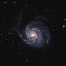 M101,                                Ruben Jorksveld