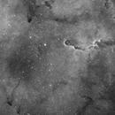 IC 1396 Elephant's Trunk Nebula,                                Mike Oates