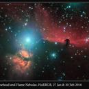 Horsehead & Flame Nebulae, HαRRGB, 27 Jan & 20 Feb 2016,                                David Dearden