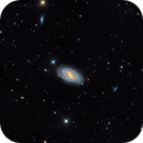 M 109 NGC 3992,                                Mike Miller