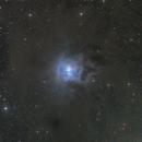 NGC 7023 Iris Nebula,                                Kathy Walker