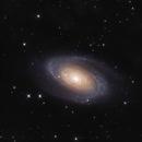 Bode's Galaxy,                                Andrea Ferri