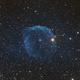 Sh2-308,                                Astro_Hoff