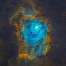 M8 - Lagoon Nebula,                                Robin Lim