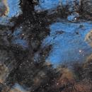 Pelican Nebula (IC 5070) in Narrow Band,                                lizarranet