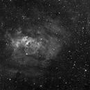 NGC7635 Bubble Nebula,                                S. DAVID