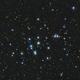 M44 - Beehive Cluster,                                Tom