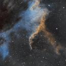 NGC 7000,                                Anca Popa