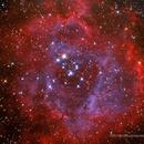 The Rosette Nebula,                                RichardBoudreau