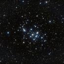 M44,                                David Johnson