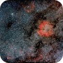 IC1396 (Cep) – wide field,                                firstLight