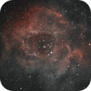 C49 Rosette Nebula-HOO,                                Adel Kildeev